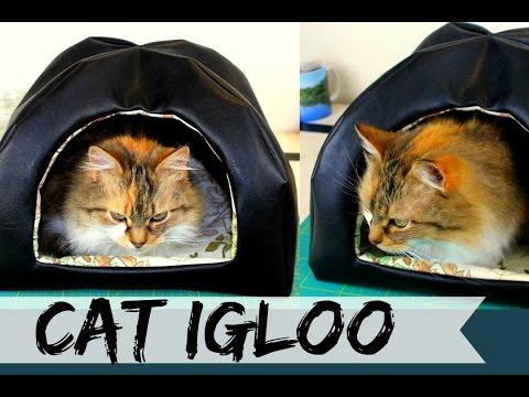 cat-igloo