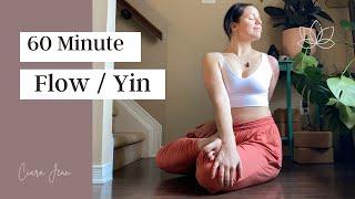 60 minute Flow/Yin