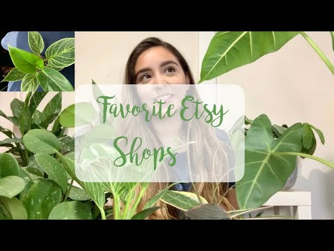 My Favorite Places To Buy Plants Online | Etsy