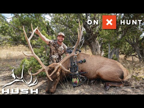 ONXHUNT E-SCOUTING FOR EARLY SEASON ELK!