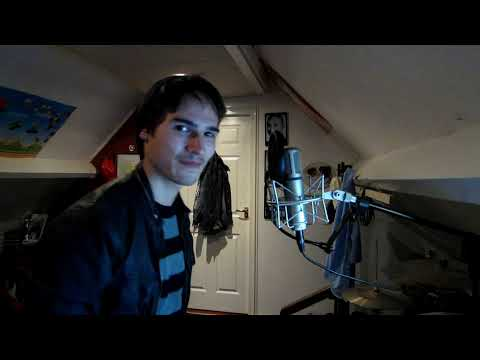 Linkin Park - BURN IT DOWN(cover)