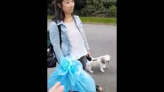 Crazy woman attacks man and his dog