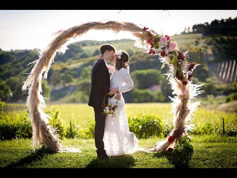 The Wedding Knot by Dashiell