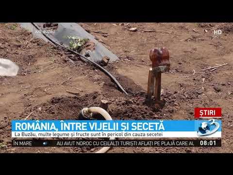 România este lovită de fenomene extreme. Țara noastră, între secetă și vijelie