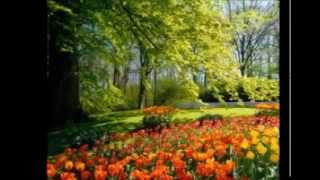 Maher zain paradise lyrics