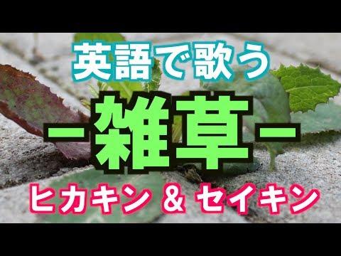 雑草 / ヒカキン&セイキン 【英語で歌う】フル歌詞付き / Zassou By Hikakin & Seikin (JPOP In English)