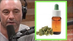 Joe Rogan - The Benefits of CBD