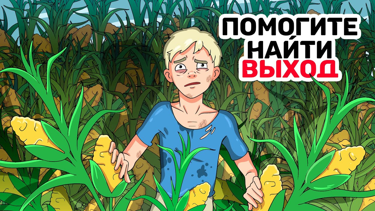 Я на 3 дня потерялся на кукурузном поле