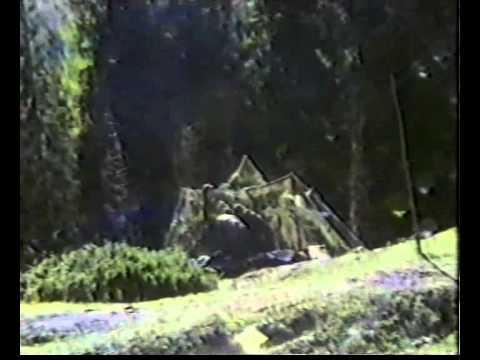 Scuola tiri Passo San Pellegrino - YouTube
