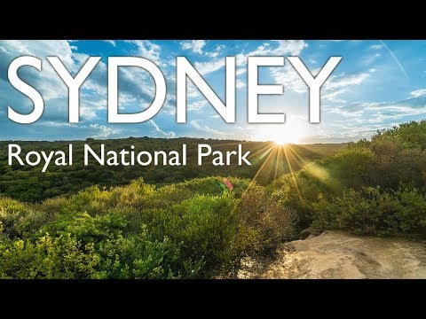 Royal National Park in Sydney, Australia