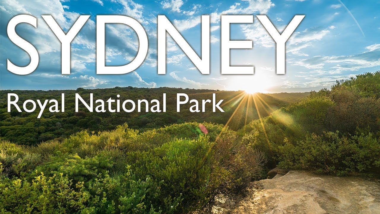 Royal National Park in Sydney, Australia - YouTube
