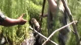 Southern Hog Slayers - Episode 4 - Hog Hunting in a Flood