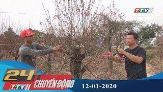 #24hchuyendong #tayninhtv #thoisuhomnay 24h Chuyển động 12-01-2020 | Tin tức hôm nay | TayNinhTV
