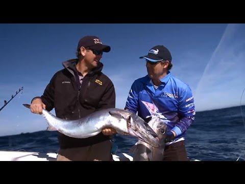 Deep Sea Fishing Catching Sydney Kingfish, Gemfish & Blue Eye Cod