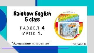 """""""Радужный английский"""" 5 класс. Раздел 4, урок 1 """"Домашние животные"""""""