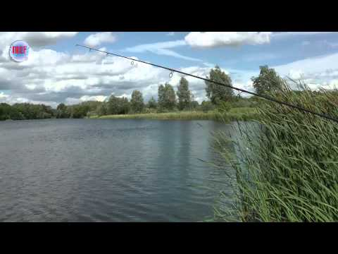 MCF Carp Fishing | Sneaker Back Lead