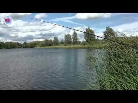 MCF Carp Fishing   Sneaker Back Lead