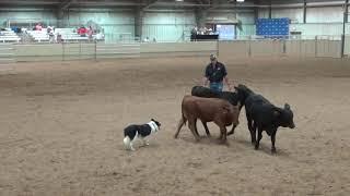 Tulsa Chase 10 2 19