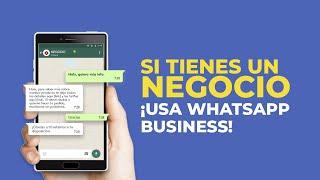 ▷ WHATSAPP BUSINESS: Organiza contactos y Programa mensajes automáticos para clientes y prospectos