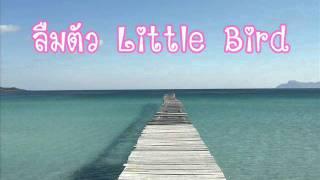ลืมตัว - Little Bird