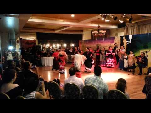 Libby's Flamenco Performance