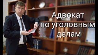 Адвокат по уголовным делам: защита прав обвиняемого