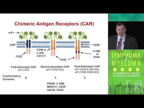 CAR-T Cell Therapies for CLL: How are the various techniques different?