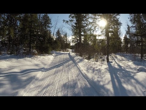 Ride Michigan's Snowmobile Trails