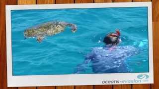 Oceans Evasion, location de catamarans et voiliers aux Seychelles