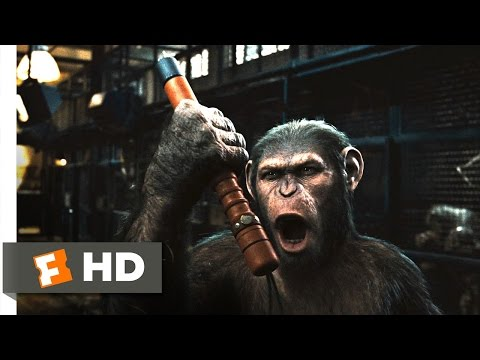 Rise Of The Planet Of The Apes (2011) - Prison Break Scene (2/5) | Movieclips