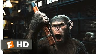 Repeat youtube video Rise of the Planet of the Apes (2/5) Movie CLIP - Prison Break (2011) HD