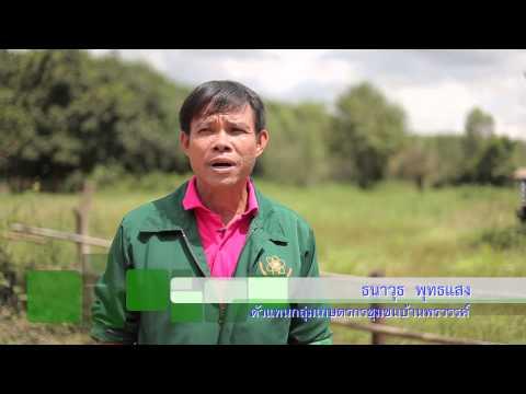 สารคดี ธกส เพื่อนชุมชน 2557 ตอนที่ 30 เกษตรอินทรีย์ สกลนคร