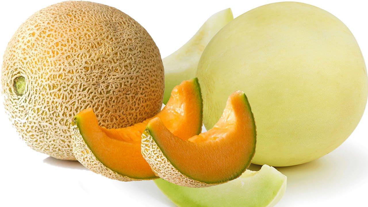 Melon Asl Youtube Eating cantaloupe may bring a number of health benefits. melon asl