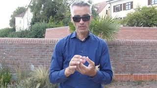 Run auf Edelmetalle 2013: Wer erinnert sich? Goldmünzen, Silbermünzen JETZT kaufen?
