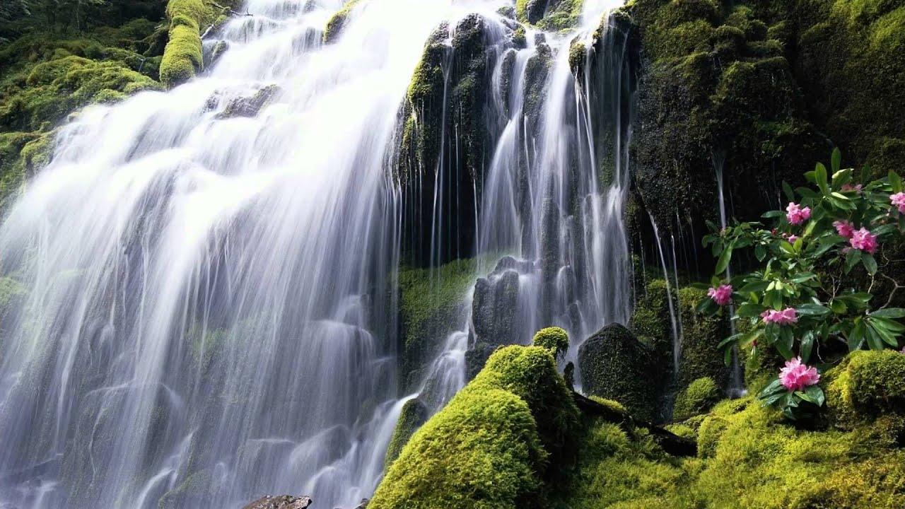 Fall Animated Wallpaper Windows 7 Beautifull Hd Waterfall Wallpapers Youtube