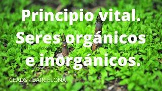 """Mini-Charla """"Principio vital. Seres orgánicos e inorgánicos. La vida y la muerte."""""""
