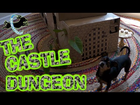 The Castle Dungeon Puzzle | Ripley Rescues Prince Newt In Her New Dog Game