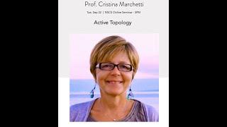 NSCS Online Seminar - Prof. Cristina Marchetti default