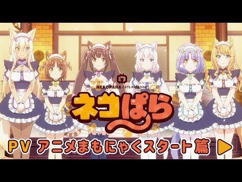 「ネコぱら」の参照動画