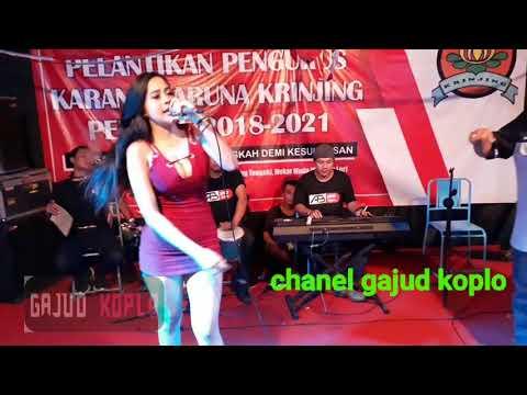Xena Xenita Ft Yanto - Cinta Terlarang - Pelantikan Pengurus - Pemuda Krinjing