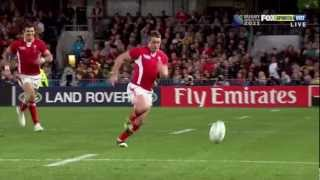 Wales Rugby World Cup Tribute