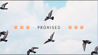 Promised - Old Covenant vs. New Covenant - Part 3