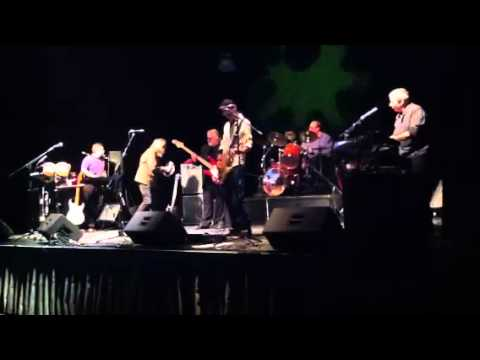 Call Me The Breeze, performed by Ponzi Scheme Band