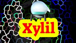 Download lagu How to sayxylyl MP3