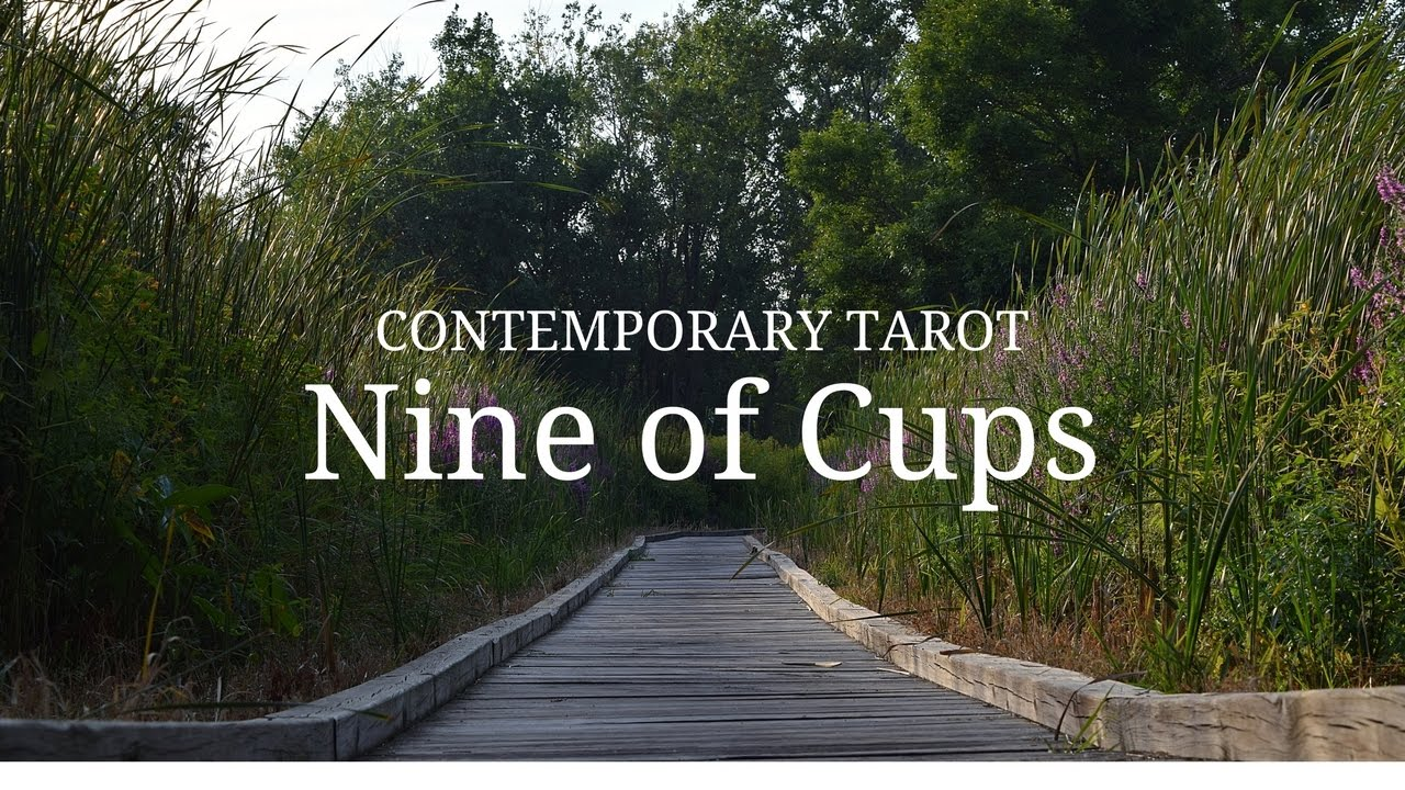 Nine of Cups in 3 Minutes