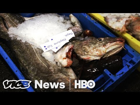 Immigration Raids & Britain's Fish After Brexit: VICE News Tonight Full Episode (HBO)