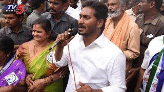 YS Jagan Padayatra Schedule Day 91 | Prakasam Dist | TV5 News
