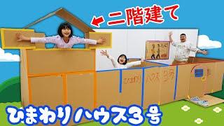ついに段ボールで二階建て!?ひまわりハウス3号完成!!!himawari-CH