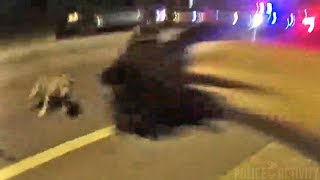 Bodycam Shows Grand Rapids Police Officer Shoot Charging Pit Bull