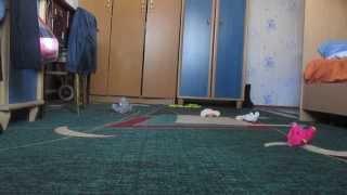 видео про домового!!!ржут девчонки(, 2013-09-29T03:41:11.000Z)